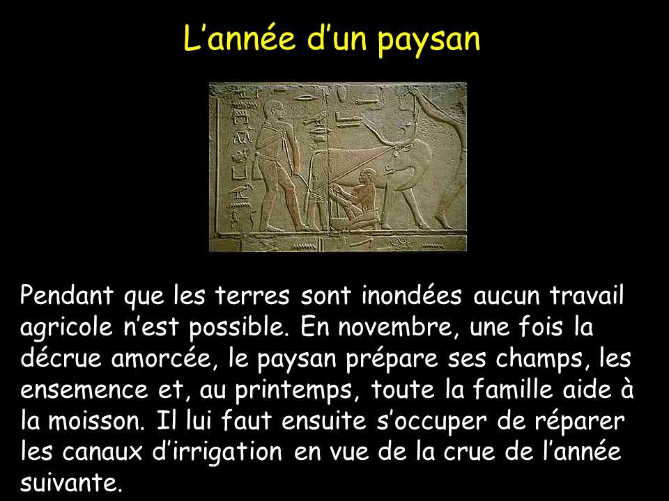 Conclusion Jai appris que les égyptiens croient à une vie après la mort, quune sculpture possède la même force que leur modèle vivant et que la langue égyptienne fut lune des premières langues à être écrites.