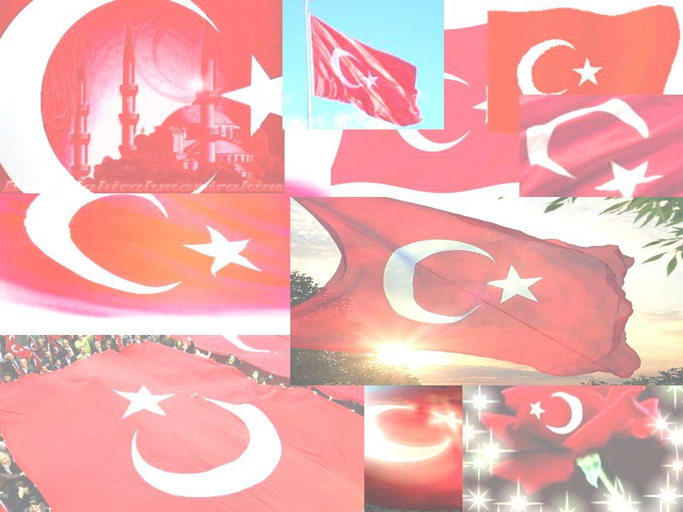 La Turquie est un pays qui se trouve en Eurasie.