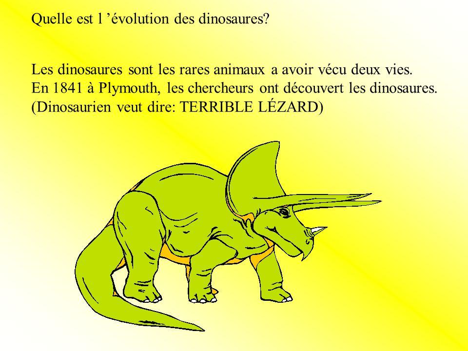 Les dinosaures sont les rares animaux a avoir vécu deux vies.