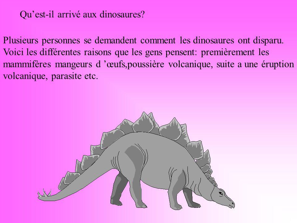 Plusieurs personnes se demandent comment les dinosaures ont disparu.
