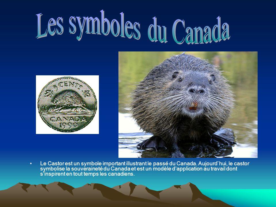 Le Castor est un symbole important illustrant le passé du Canada. Aujourd`hui, le castor symbolise la souveraineté du Canada et est un modèle dapplica