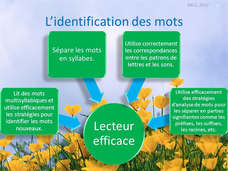 Lidentification des mots MELS, 2012 3 Lecteur efficace Lit des mots multisyllabiques et utilise efficacement les stratégies pour identifier les mots n