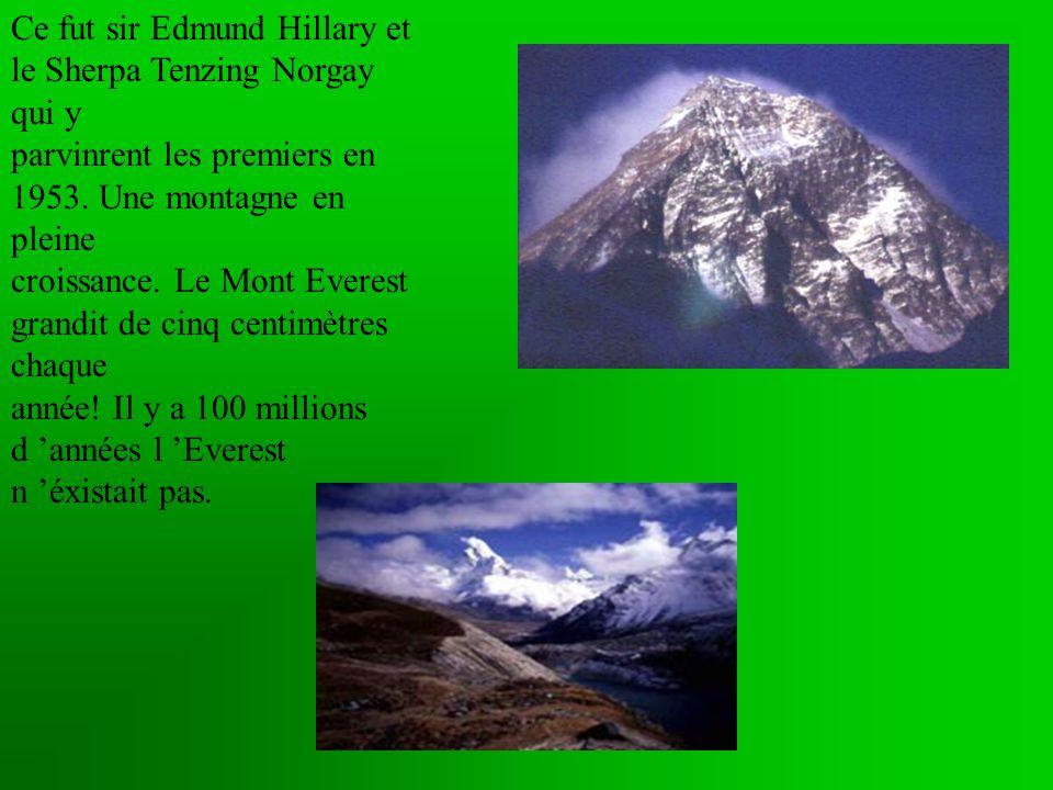 Ce fut sir Edmund Hillary et le Sherpa Tenzing Norgay qui y parvinrent les premiers en 1953.