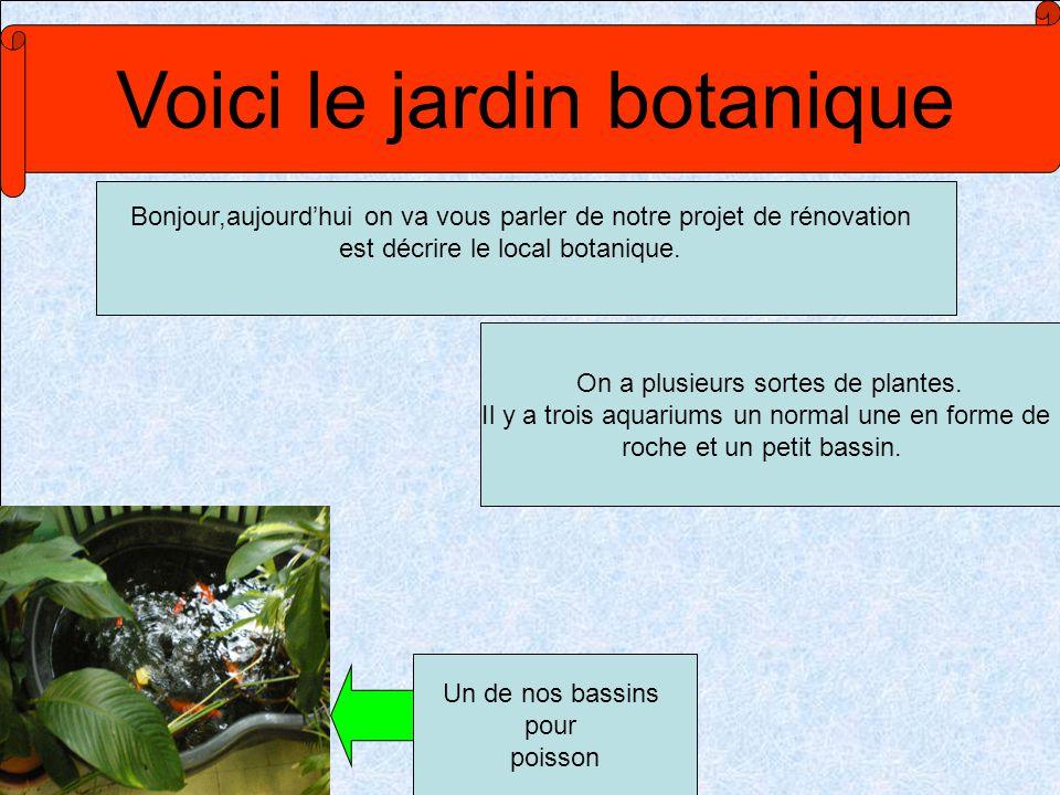 Voici le jardin botanique Bonjour,aujourdhui on va vous parler de notre projet de rénovation est décrire le local botanique. Un de nos bassins pour po