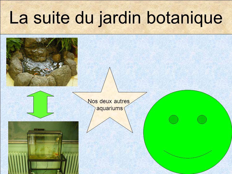 La suite du jardin botanique Nos deux autres aquariums