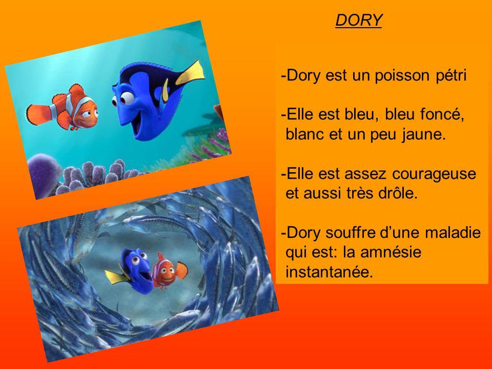 -Dory est un poisson pétri -Elle est bleu, bleu foncé, blanc et un peu jaune. -Elle est assez courageuse et aussi très drôle. -Dory souffre dune malad