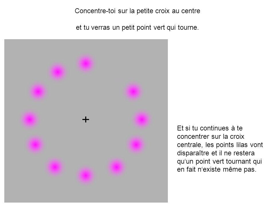 Concentre-toi sur la petite croix au centre et tu verras un petit point vert qui tourne. Et si tu continues à te concentrer sur la croix centrale, les