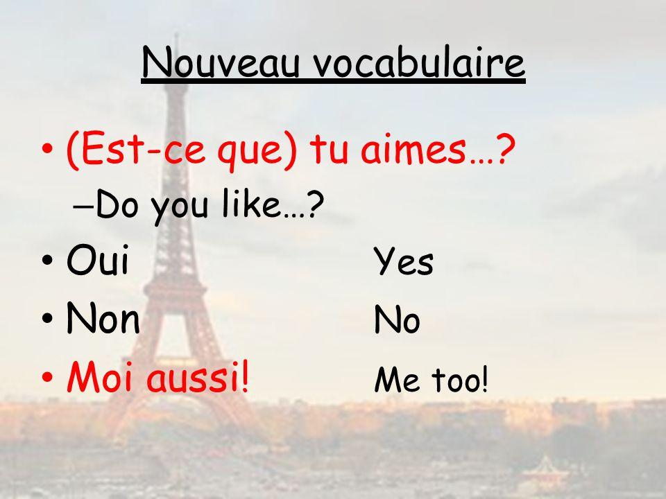 Nouveau vocabulaire (Est-ce que) tu aimes…? – Do you like…? Oui Yes Non No Moi aussi! Me too!