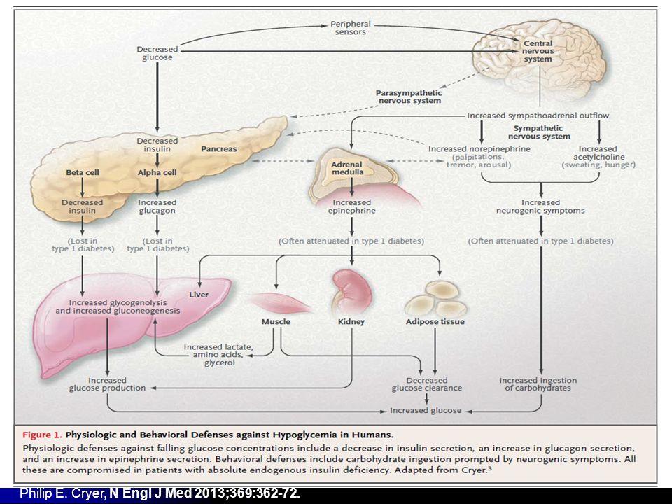 Insulinome, traitement symptomatique Diazoxide Diazoxide Diminution sécrétion insuline (canaux potassiques) Diminution sécrétion insuline (canaux potassiques) EI : rétention hydrosodée, hirsutisme, Steven Johnson EI : rétention hydrosodée, hirsutisme, Steven Johnson Plusieurs cas defficacité prolongée (jusquà 22ans de suivi) Plusieurs cas defficacité prolongée (jusquà 22ans de suivi) Autres molécules (case reports) Autres molécules (case reports) Analogues de la somatostatine Analogues de la somatostatine Inhibiteurs de mTOR Inhibiteurs de mTOR