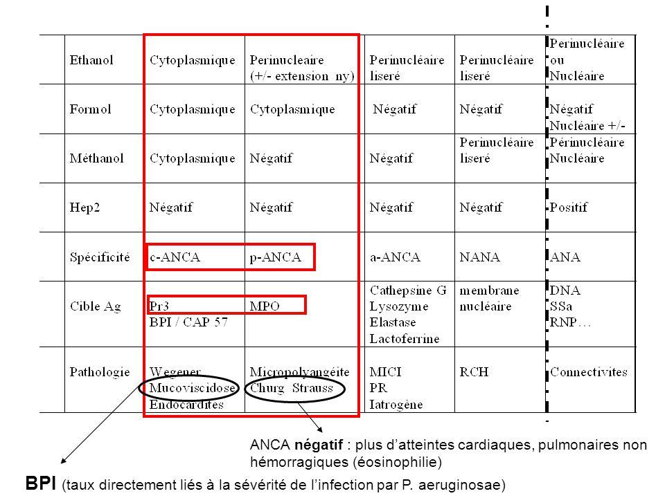 BPI (taux directement liés à la sévérité de linfection par P. aeruginosae) ANCA négatif : plus datteintes cardiaques, pulmonaires non hémorragiques (é
