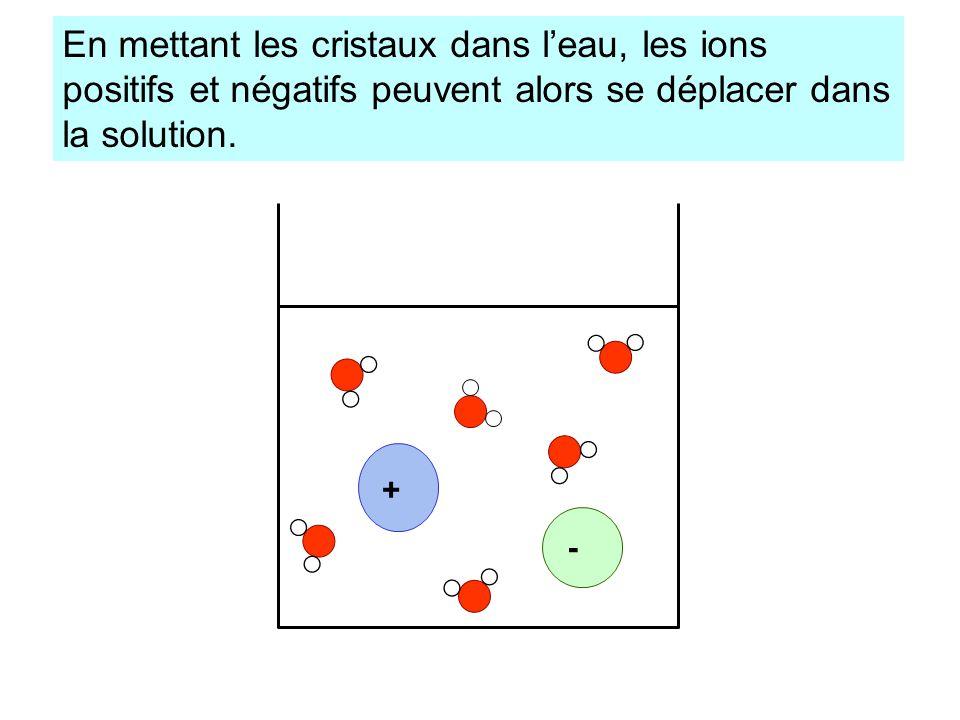+ - En mettant les cristaux dans leau, les ions positifs et négatifs peuvent alors se déplacer dans la solution.