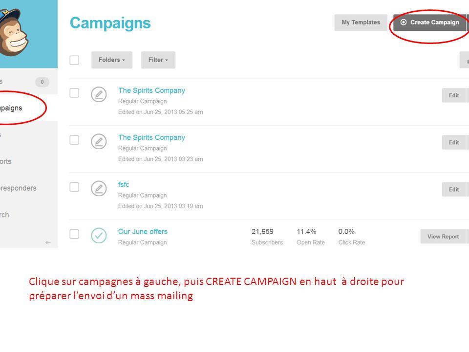 Clique sur campagnes à gauche, puis CREATE CAMPAIGN en haut à droite pour préparer lenvoi dun mass mailing