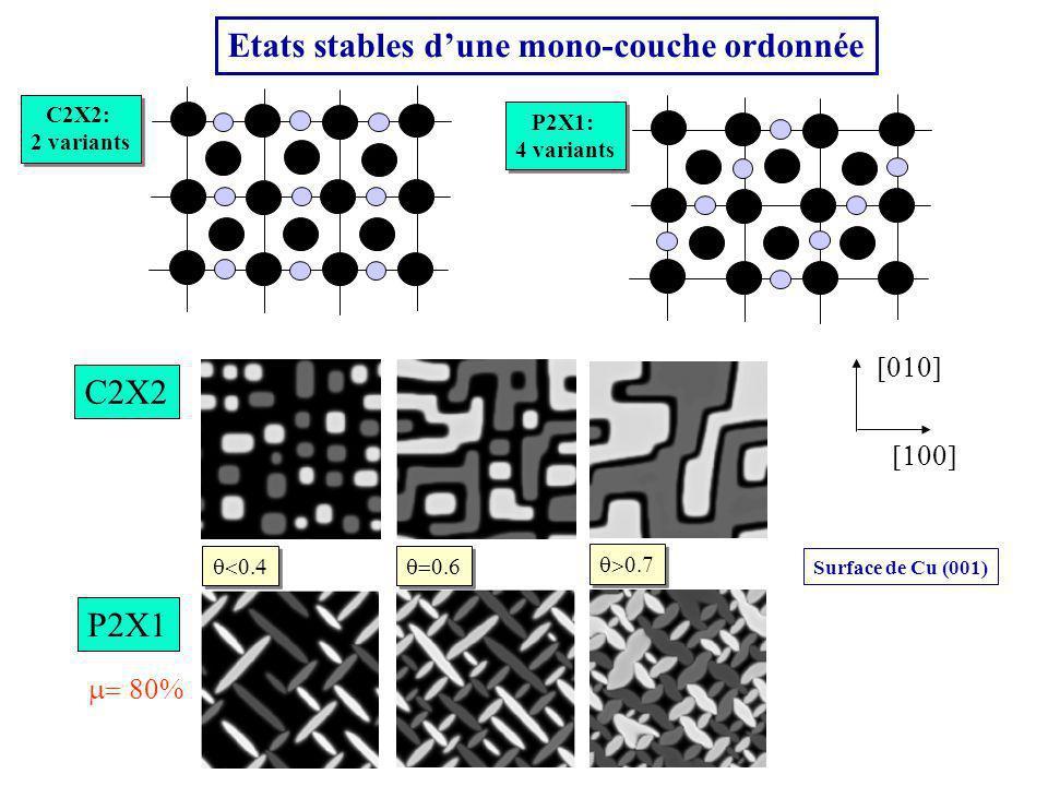 Etats stables dune mono-couche ordonnée C2X2 P2X1 Surface de Cu (001) C2X2: 2 variants C2X2: 2 variants P2X1: 4 variants P2X1: 4 variants