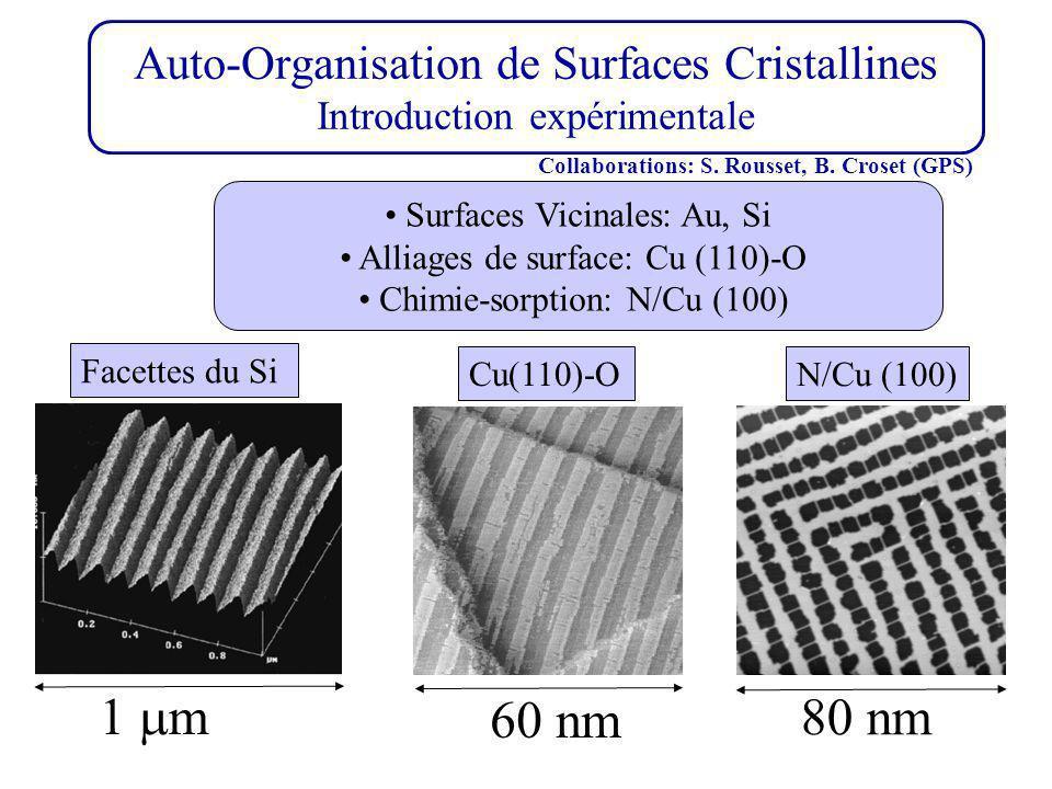Auto-Organisation de Surfaces Cristallines Introduction expérimentale Surfaces Vicinales: Au, Si Alliages de surface: Cu (110)-O Chimie-sorption: N/Cu (100) 60 nm 1 m 80 nm N/Cu (100) Cu(110)-O Facettes du Si Collaborations: S.