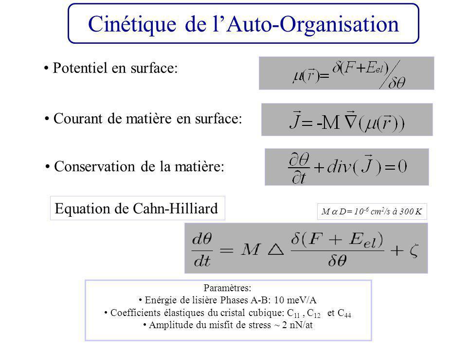 Cinétique de lAuto-Organisation Equation de Cahn-Hilliard Courant de matière en surface: Conservation de la matière: M D= 10 -6 cm 2 /s à 300 K Paramètres: Enérgie de lisière Phases A-B: 10 meV/A Coefficients élastiques du cristal cubique: C 11, C 12 et C 44 Amplitude du misfit de stress ~ 2 nN/at Potentiel en surface: