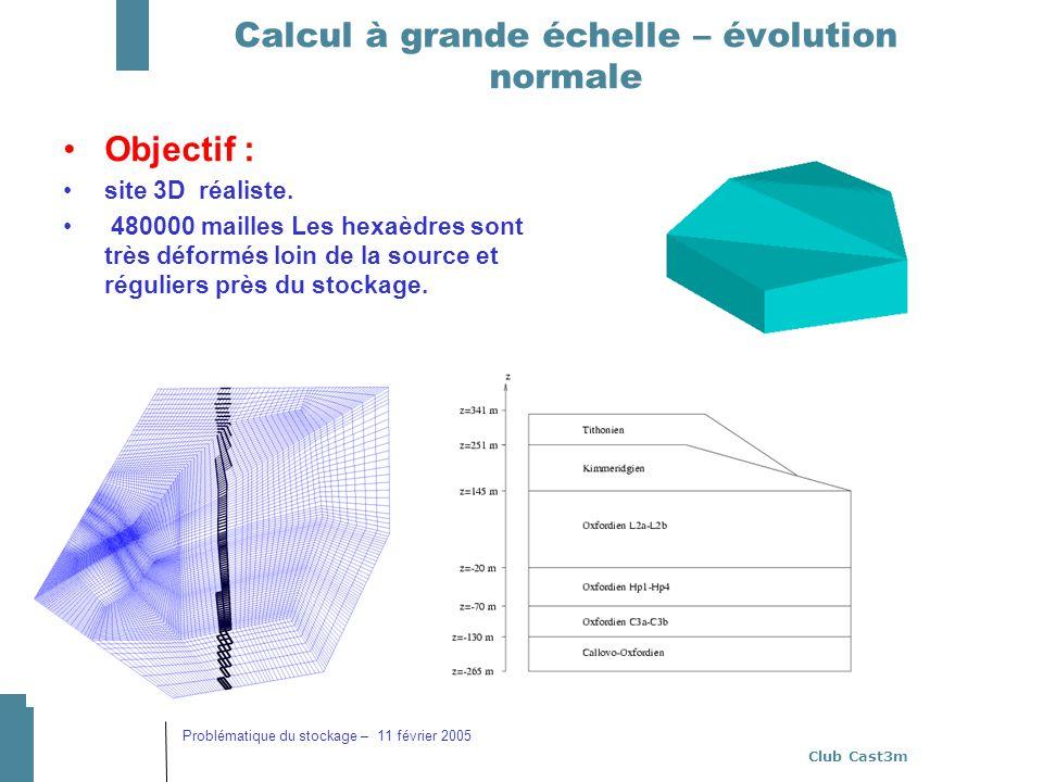 Club Cast3m Problématique du stockage – 11 février 2005 Calcul à grande échelle – évolution normale Objectif : site 3D réaliste. 480000 mailles Les he