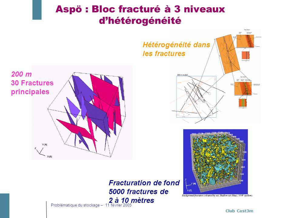 Club Cast3m Problématique du stockage – 11 février 2005 Aspö : Bloc fracturé à 3 niveaux dhétérogénéité 200 m 30 Fractures principales Hétérogénéité d