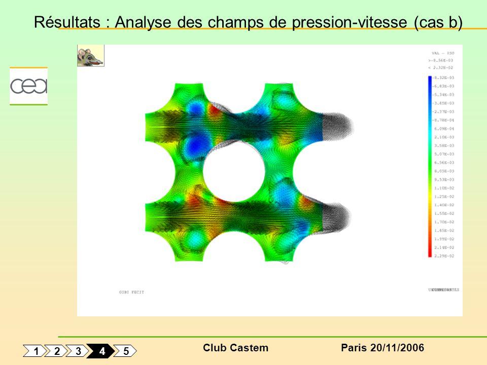 Club CastemParis 20/11/2006 Résultats : Analyse des champs de pression-vitesse (cas b) 1 5 3 2 4