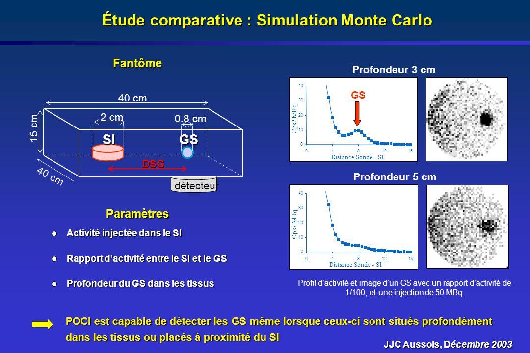 Étude comparative : Simulation Monte Carlo GSSI 40 cm 15 cm 40 cmDSG 2 cm 0.8 cm détecteur Fantôme Paramètres Profondeur du GS dans les tissus Rapport