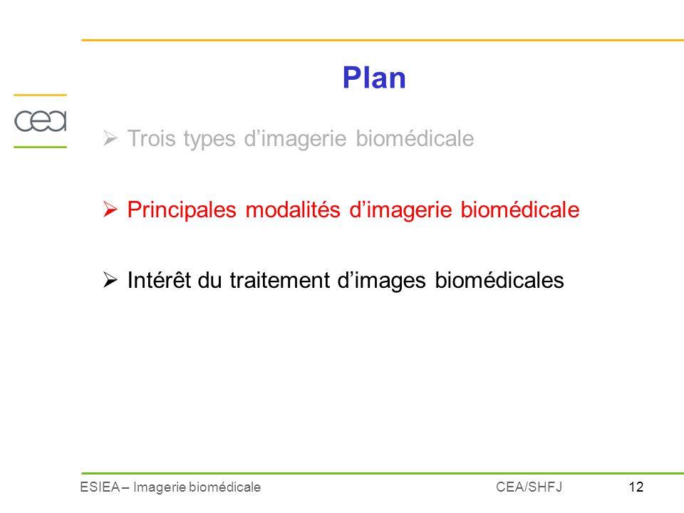 12ESIEA – Imagerie biomédicaleCEA/SHFJ Plan Trois types dimagerie biomédicale Principales modalités dimagerie biomédicale Intérêt du traitement dimage