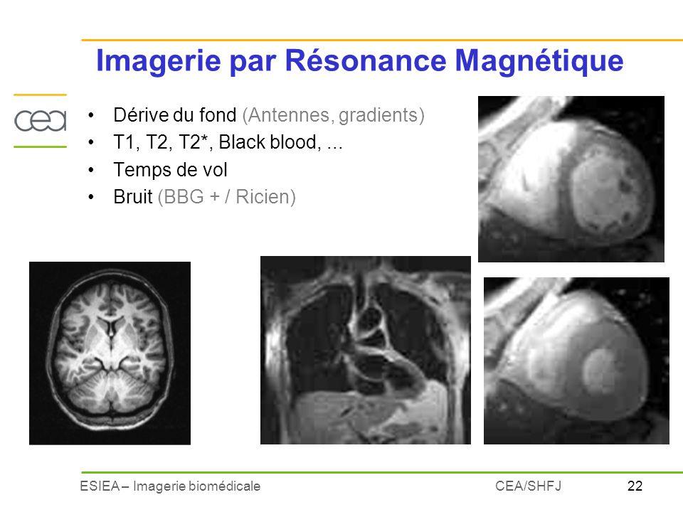 22ESIEA – Imagerie biomédicaleCEA/SHFJ Imagerie par Résonance Magnétique Dérive du fond (Antennes, gradients) T1, T2, T2*, Black blood,... Temps de vo