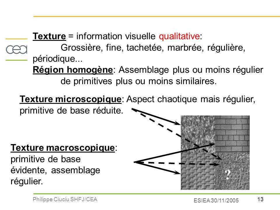 13Philippe Ciuciu SHFJ/CEA ESIEA 30/11/2005 Texture = information visuelle qualitative: Grossière, fine, tachetée, marbrée, régulière, périodique... R