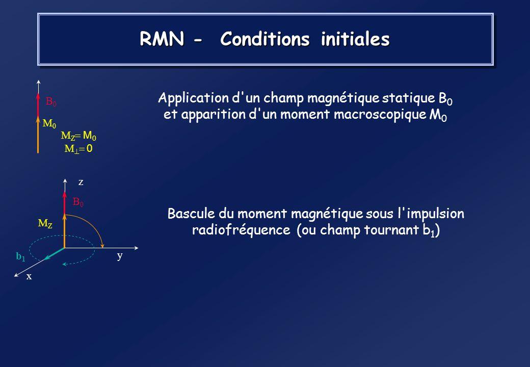 En présence dun champ magnétique, laimantation de certains noyaux (hydrogène, phosphore… ) soriente dans la direction du champ : Laimantation résultan