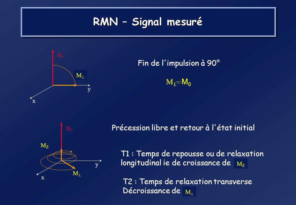 Application d'un champ magnétique statique B 0 et apparition d'un moment macroscopique M 0 Bascule du moment magnétique sous l'impulsion radiofréquenc