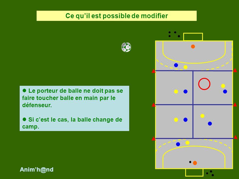 Le porteur de balle ne doit pas se faire toucher balle en main par le défenseur. Si cest le cas, la balle change de camp. Ce quil est possible de modi