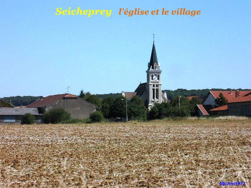 Jaulny le château du XIe et XIIe siècle