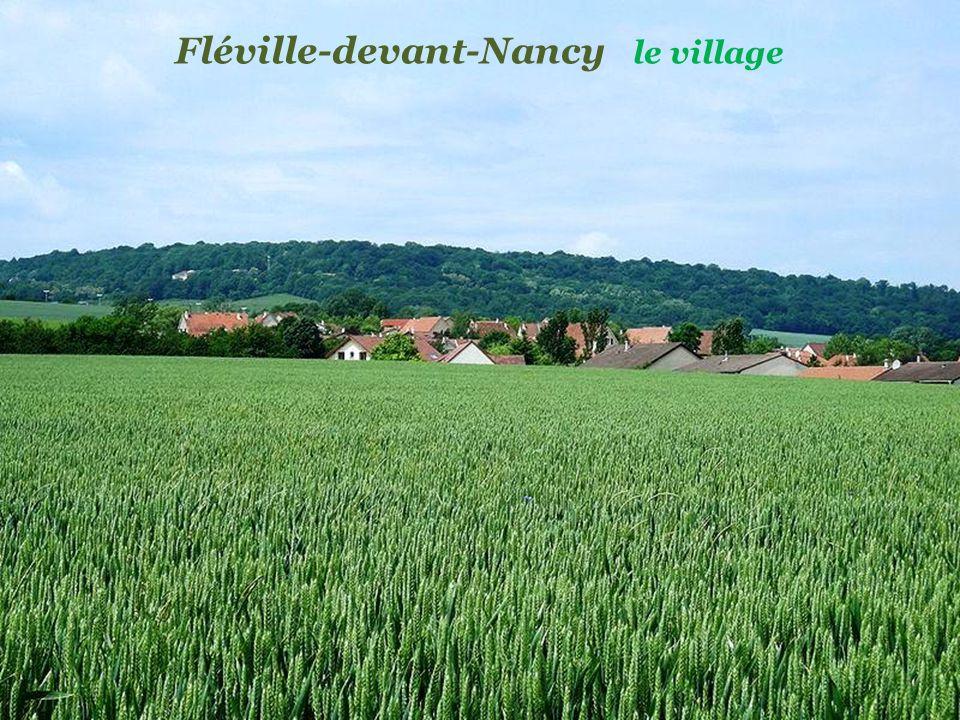 Art-sur-Meurthe la Chartreuse de Bosserville. du XVIIe siècle