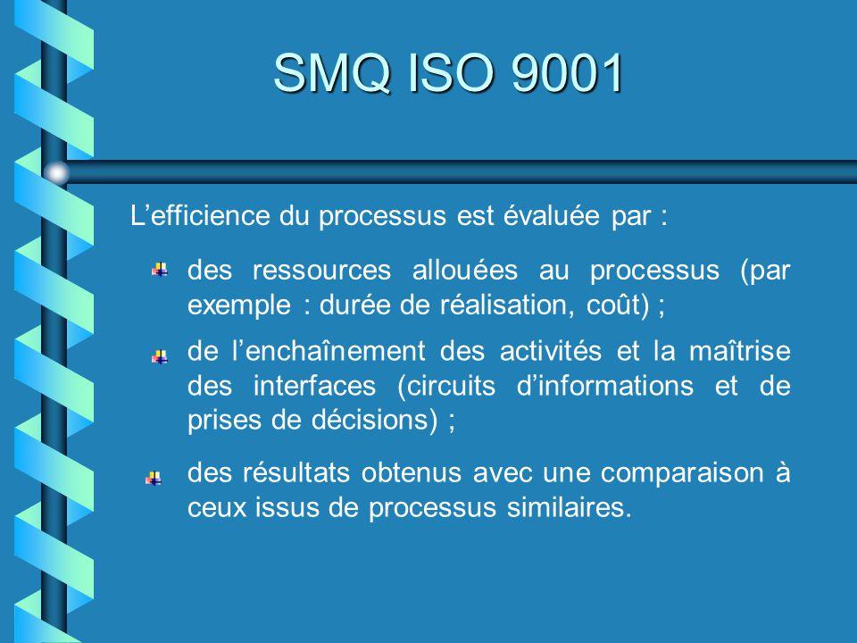 Lefficience du processus est évaluée par : des ressources allouées au processus (par exemple : durée de réalisation, coût) ; de lenchaînement des acti