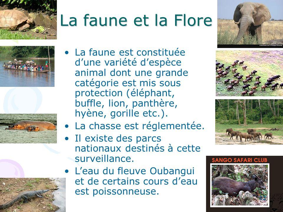 La faune et la Flore La faune est constituée dune variété despèce animal dont une grande catégorie est mis sous protection (éléphant, buffle, lion, panthère, hyène, gorille etc.).