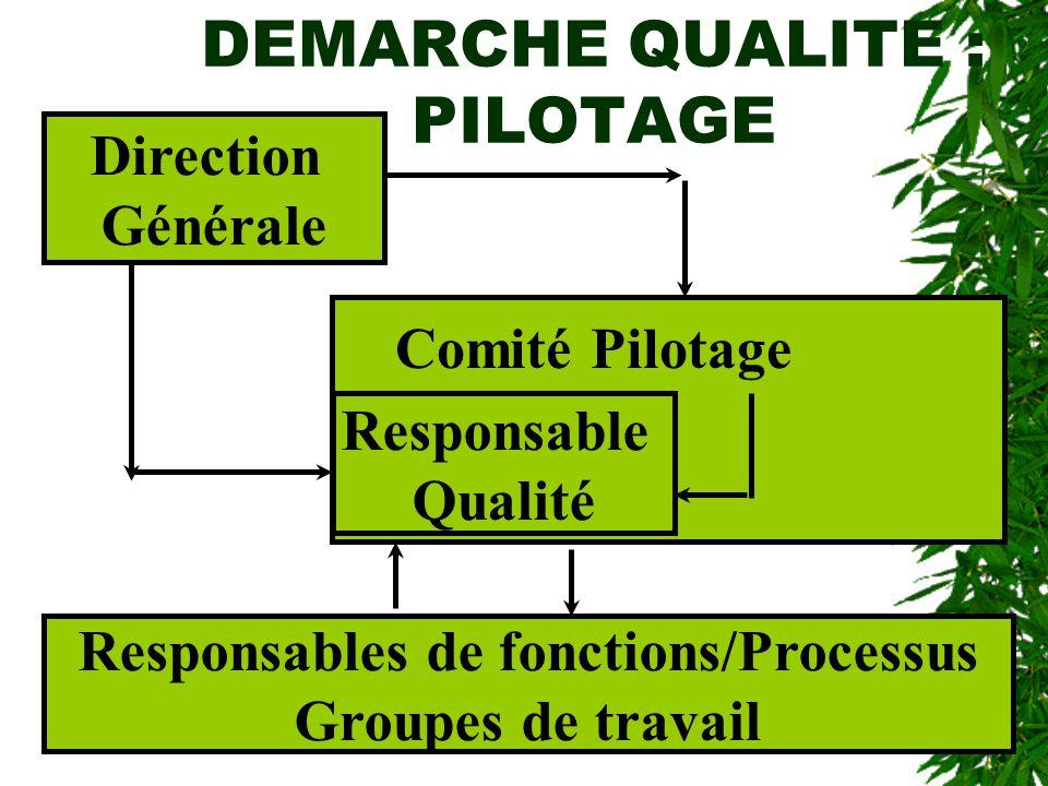 DEMARCHE QUALITE : PILOTAGE Direction Générale Responsable Qualité Responsables de fonctions/Processus Groupes de travail Comité Pilotage