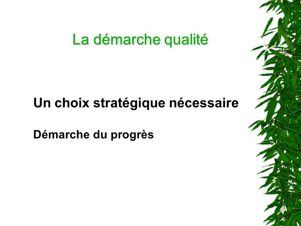 La démarche qualité Un choix stratégique nécessaire Démarche du progrès