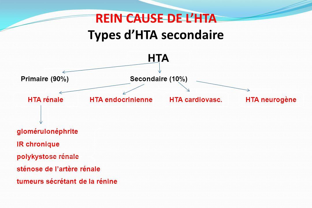 HTA Primaire (90%)Secondaire (10%) HTA rénaleHTA endocrinienneHTA cardiovasc.HTA neurogène REIN CAUSE DE LHTA Types dHTA secondaire glomérulonéphrite