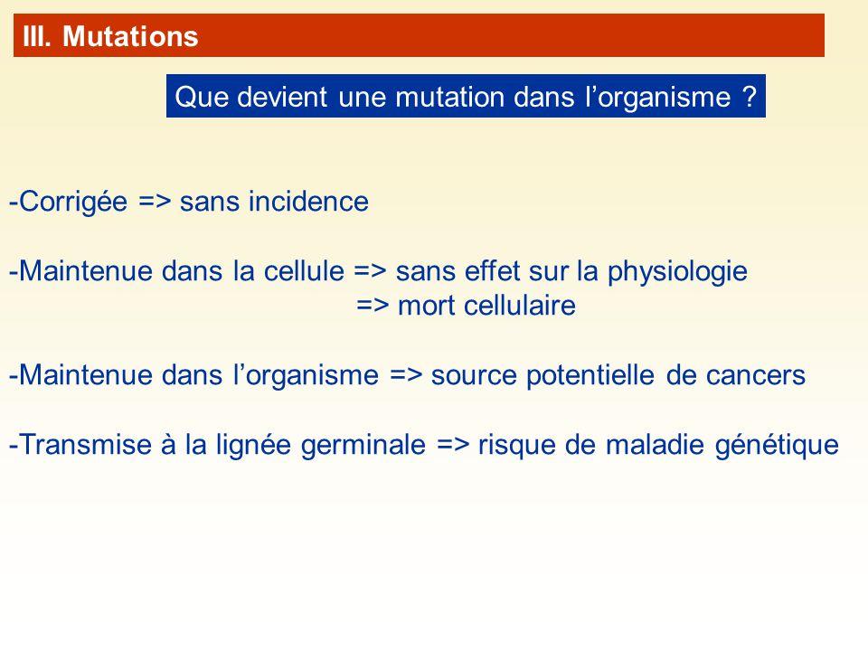 Que devient une mutation dans lorganisme ? -Corrigée => sans incidence -Maintenue dans la cellule => sans effet sur la physiologie => mort cellulaire