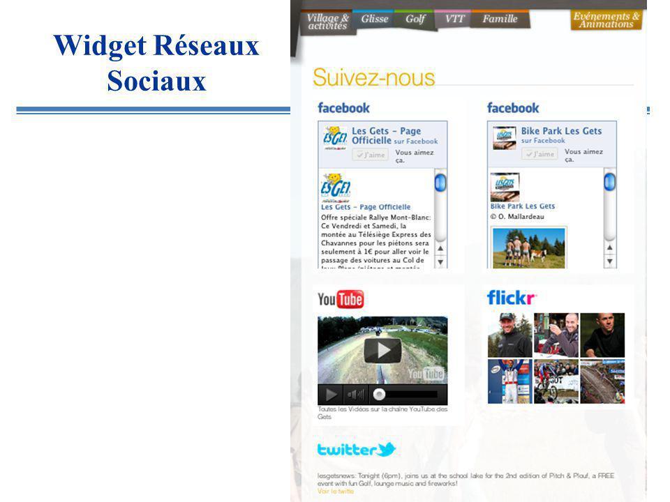 Widget Réseaux Sociaux
