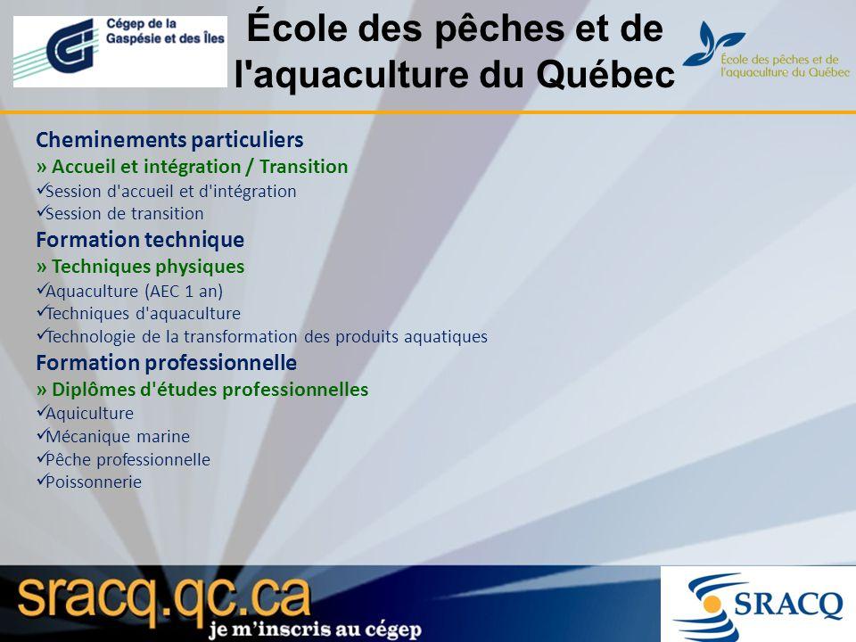 École des pêches et de l'aquaculture du Québec Cheminements particuliers » Accueil et intégration / Transition Session d'accueil et d'intégration Sess