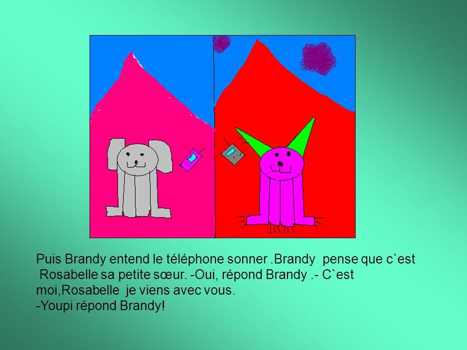 Puis Brandy entend le téléphone sonner.Brandy pense que c`est Rosabelle sa petite sœur.