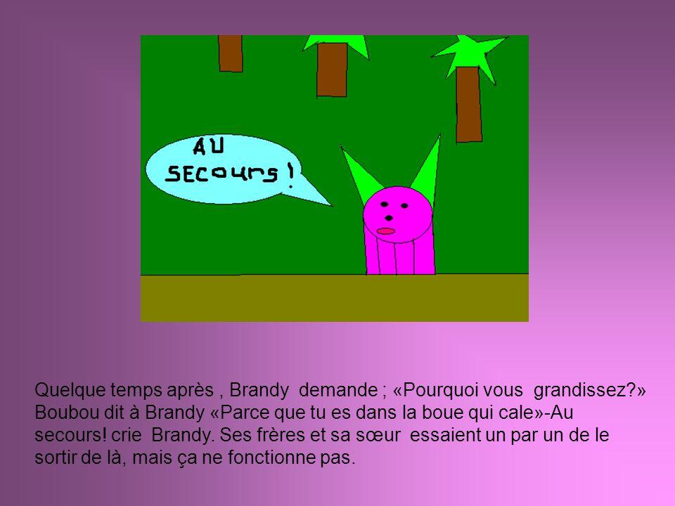 Quelque temps après, Brandy demande ; «Pourquoi vous grandissez?» Boubou dit à Brandy «Parce que tu es dans la boue qui cale»-Au secours! crie Brandy.