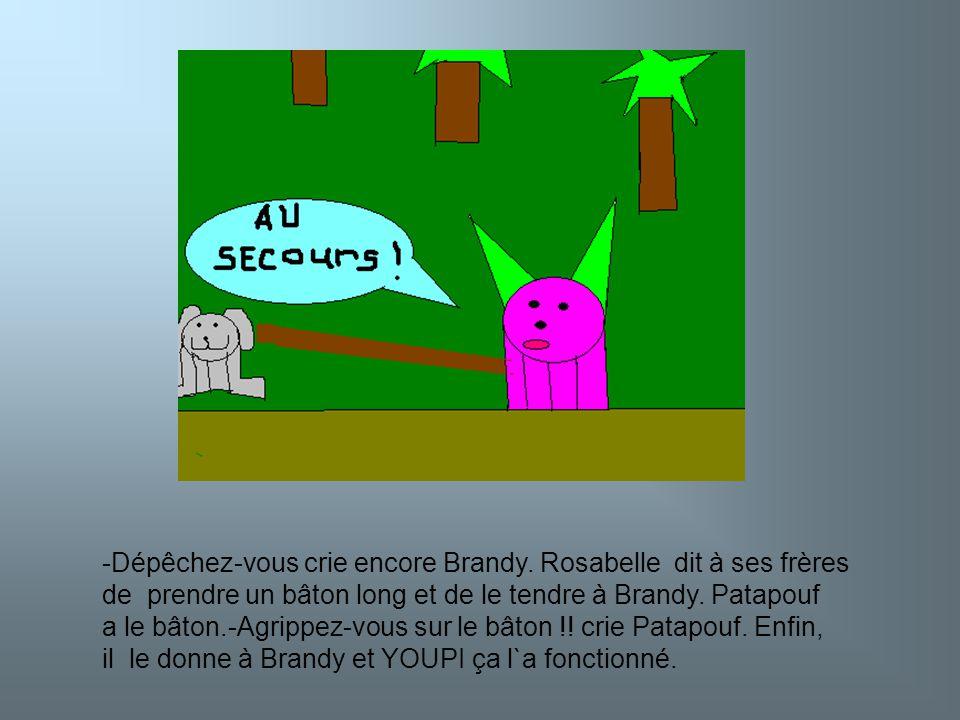 Brandy est sauvé .Brandy remercie tous ses frères et sa petite sœur.