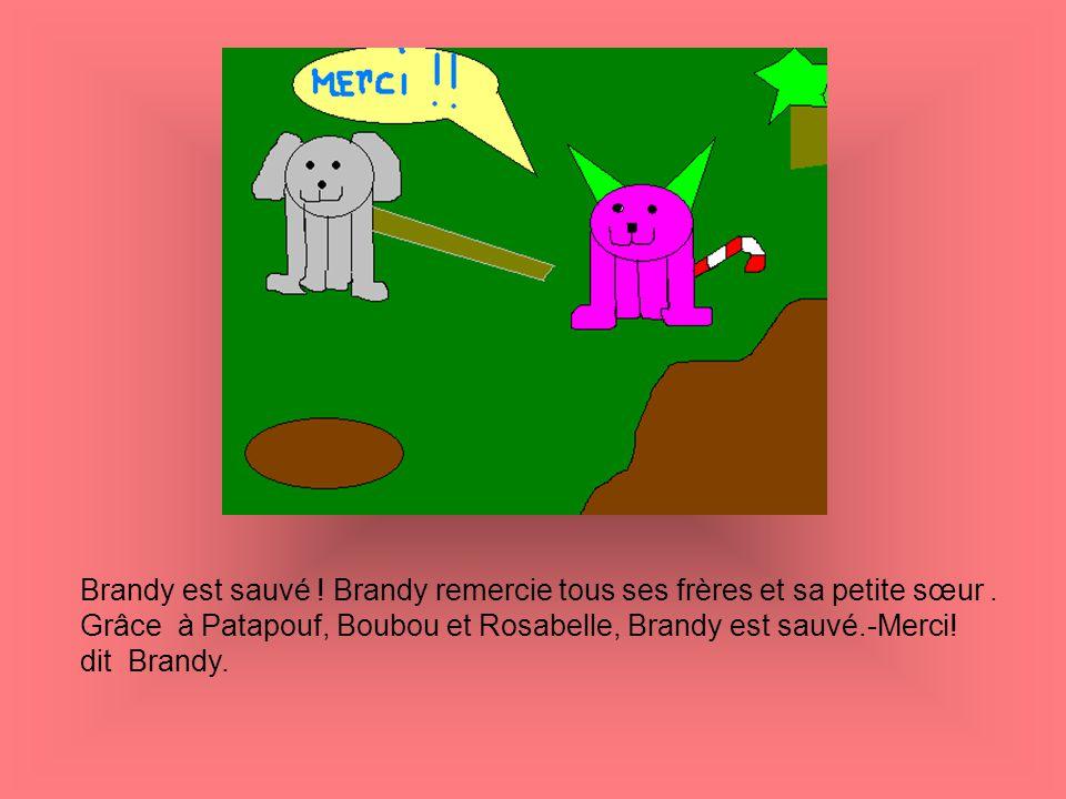 Brandy est sauvé ! Brandy remercie tous ses frères et sa petite sœur. Grâce à Patapouf, Boubou et Rosabelle, Brandy est sauvé.-Merci! dit Brandy.