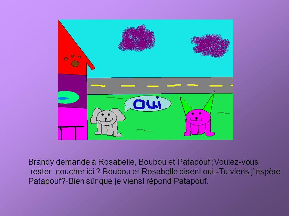 Brandy demande à Rosabelle, Boubou et Patapouf ;Voulez-vous rester coucher ici ? Boubou et Rosabelle disent oui.-Tu viens j`espère Patapouf?-Bien sûr