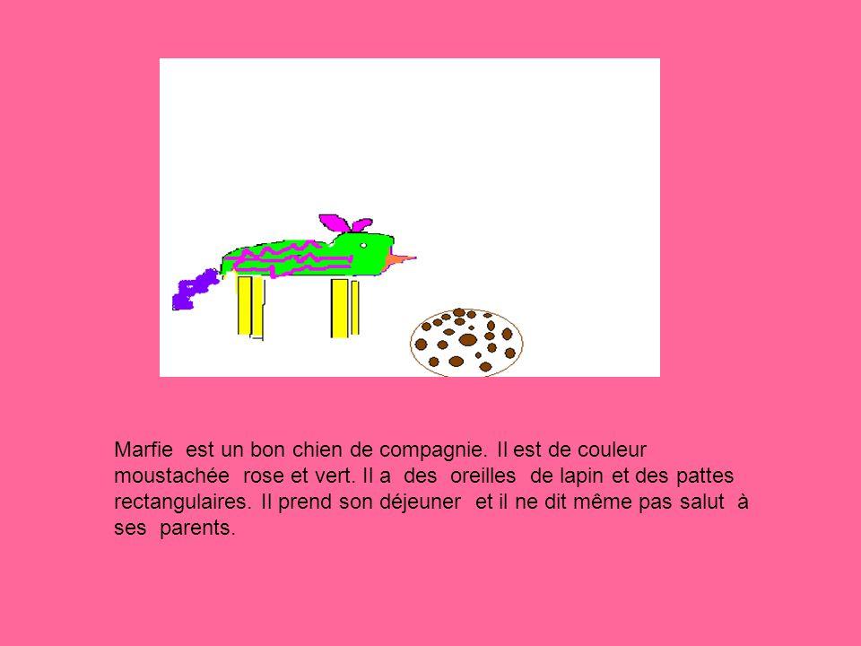 Marfie est un bon chien de compagnie. Il est de couleur moustachée rose et vert.