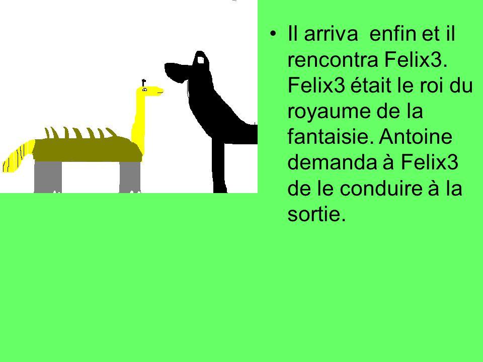 Il arriva enfin et il rencontra Felix3. Felix3 était le roi du royaume de la fantaisie. Antoine demanda à Felix3 de le conduire à la sortie.