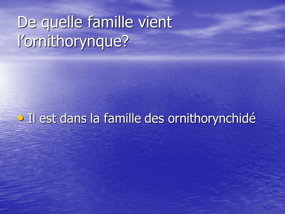 De quelle famille vient lornithorynque.