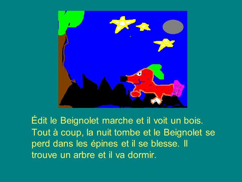 Édit le Beignolet marche et il voit un bois.