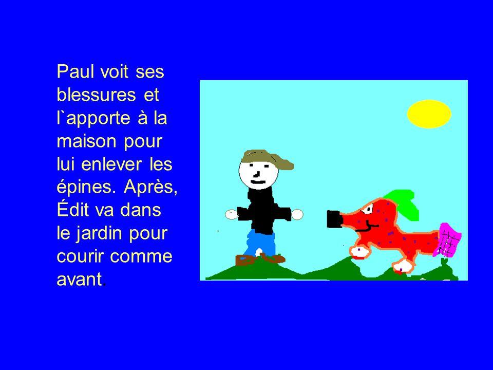 Paul voit ses blessures et l`apporte à la maison pour lui enlever les épines.