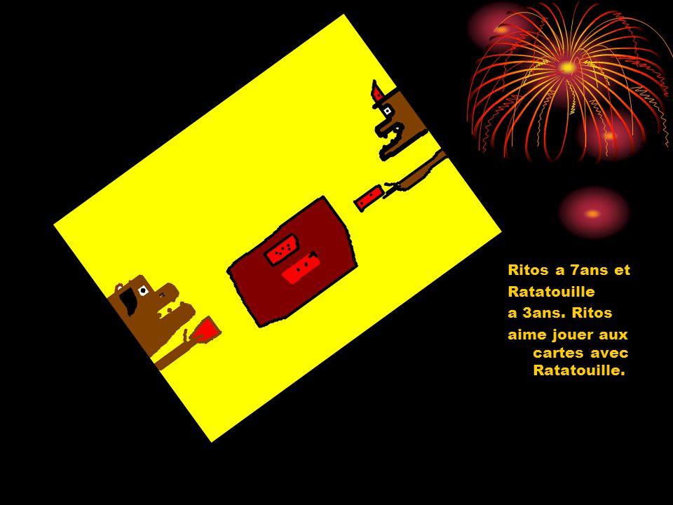 Ritos a 7ans et Ratatouille a 3ans. Ritos aime jouer aux cartes avec Ratatouille.